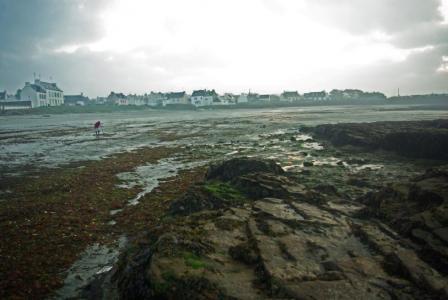 Locmria marée basse.